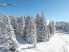 Paysage de montagne en hiver