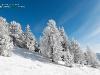 Paysage de neige poudreuse