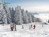 Piste avec ecole de ski