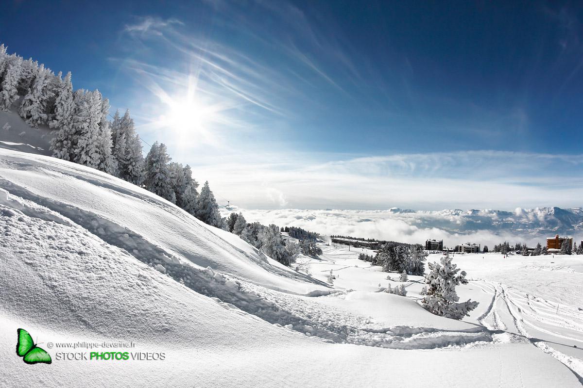 Trace snowboard